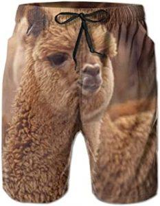 bañador bermuda con imagen alpaca