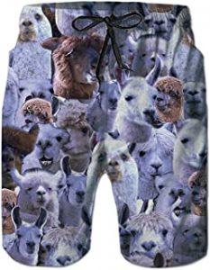 Bañador de hombre con alpacas