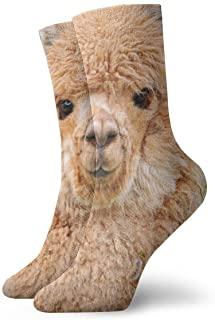 calcetines mujer con imagen de alpaca